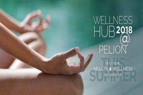 Wellness Hub by 12 Months