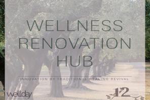 Wellness Renovation Hub